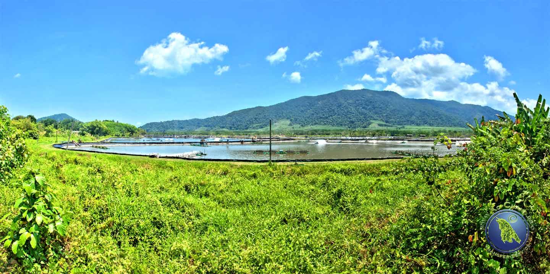 Shrimpfarm an Koh Changs Ostküste