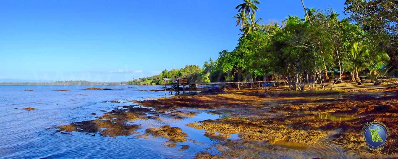 Ao Tann Beach an der Nordküste Koh Maks in Thailand