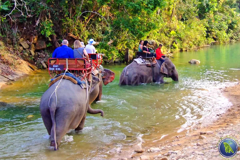 Elefantenreiten beim Klong Prao Beach auf Koh Chang