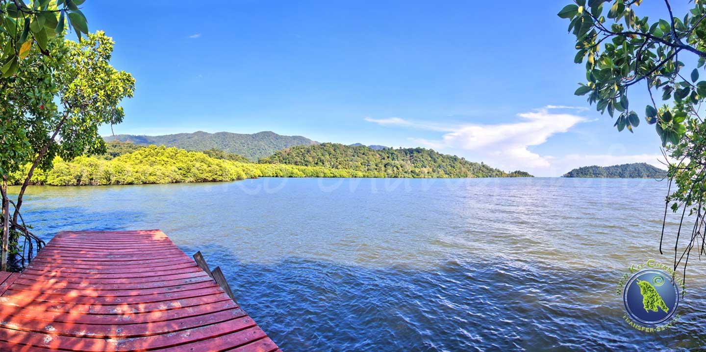 Rundgang durch den Mangrovenwald in der Salak Phet Bucht auf Koh Chang in Thailand