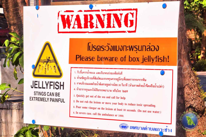 Quallen-Warnung auf Koh Chang