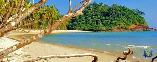 Lonely Beach on Koh Chang in Thailand